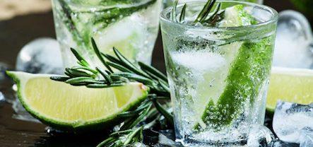 Gin & Tonic borrelboot vanaf 35,50 per persoon